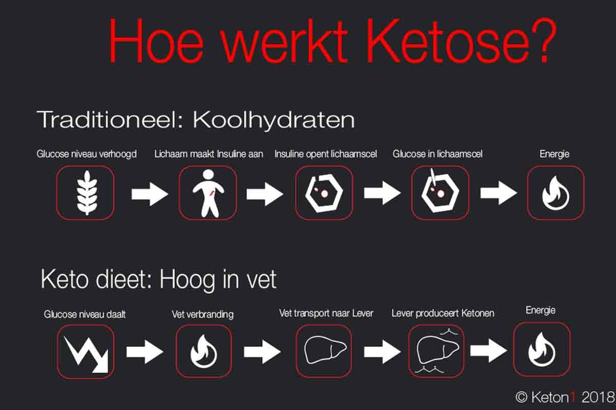 keto-hoe-werkt-dat